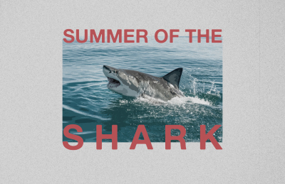 """Summer of the Shark"" Documentary Available to Stream Now"